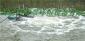 河流河道污水增氧处理推流曝气机