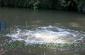 湖泊河流水处理净化推流曝气机/污水处理曝气设备