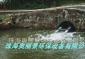河流污水净化增氧推流式曝气机